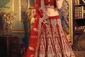 Bridal Lehenga Choli - Web soothe